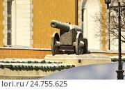 Купить «Коллекция артиллерийских орудий ХVI-ХIХ веков возле фасада здания Арсенала в Московском Кремле», эксклюзивное фото № 24755625, снято 20 декабря 2016 г. (c) lana1501 / Фотобанк Лори