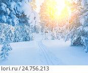 Купить «Зимний пейзаж», фото № 24756213, снято 9 января 2016 г. (c) Икан Леонид / Фотобанк Лори