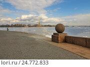 Купить «Санкт-Петербург. Нева», эксклюзивное фото № 24772833, снято 14 апреля 2010 г. (c) Александр Алексеев / Фотобанк Лори