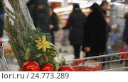 Christmas shopping concept in blur. Buying Christmas tree in the hypermarket. Стоковое видео, видеограф Vladimir Botkin / Фотобанк Лори