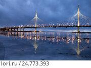 Купить «Западный скоростной диаметр (ЗСД), вантовый мост с отражением во льду. Санкт-Петербург», фото № 24773393, снято 25 декабря 2016 г. (c) Юлия Бабкина / Фотобанк Лори