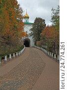 Купить «Кровавая дорожка в Псково-Печерском монастыре (Псковская область)», эксклюзивное фото № 24774261, снято 12 октября 2015 г. (c) Самохвалов Артем / Фотобанк Лори