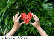Купить «Сердечко из арбуза в руках», фото № 24775281, снято 24 ноября 2016 г. (c) Галаганов Дмитрий Александрович / Фотобанк Лори