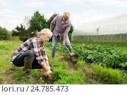 Купить «senior couple working in garden or at summer farm», фото № 24785473, снято 25 августа 2016 г. (c) Syda Productions / Фотобанк Лори