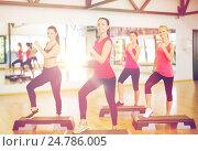 Купить «group of smiling people doing aerobics», фото № 24786005, снято 28 сентября 2013 г. (c) Syda Productions / Фотобанк Лори