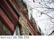 Купить «icicles hanging from building roof», фото № 24786153, снято 11 ноября 2016 г. (c) Syda Productions / Фотобанк Лори