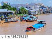 Купить «Life along the Mekong River in Vinh Long, Mekong Delta, Vietnam, Asia.», фото № 24788829, снято 12 ноября 2016 г. (c) age Fotostock / Фотобанк Лори