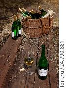 """Купить «Бутылка """"Антонио Барбадильо""""», фото № 24790881, снято 19 апреля 2019 г. (c) OSHI / Фотобанк Лори"""