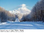 Камчатка, вулкан Шивелуч(3307m). Самый северный из действующих вулканов Камчатки, фото № 24791705, снято 25 декабря 2016 г. (c) Геннадий Теплицкий / Фотобанк Лори