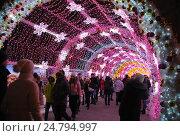 Новогодняя световая инсталляция на Тверском бульваре в Москве (2016 год). Редакционное фото, фотограф Инесса Гаварс / Фотобанк Лори