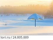 Купить «Пляжный зонтик на берегу замерзшей реки», фото № 24805889, снято 3 января 2017 г. (c) Икан Леонид / Фотобанк Лори