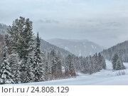 Панорама зимнего пейзажа. Стоковое фото, фотограф Valeriy Ryasnyanskiy / Фотобанк Лори