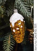 Купить «Новогодняя елочная игрушка в виде шишки на еловых веточках», эксклюзивное фото № 24810101, снято 27 ноября 2016 г. (c) lana1501 / Фотобанк Лори