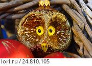 Купить «Новогодняя елочная игрушка в виде совы в корзинке», эксклюзивное фото № 24810105, снято 27 ноября 2016 г. (c) lana1501 / Фотобанк Лори