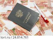 Купить «Трудовая книжка, ручка и российские деньги», фото № 24814761, снято 5 января 2017 г. (c) Наталья Осипова / Фотобанк Лори