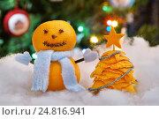 Купить «Снеговик из мандаринов и ёлочка из мандариновых корок», эксклюзивное фото № 24816941, снято 5 января 2017 г. (c) Dmitry29 / Фотобанк Лори