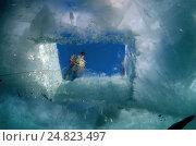 Вид из-под воды на прорубь во льду. Стоковое фото, фотограф Некрасов Андрей / Фотобанк Лори