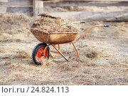 Купить «Тачка с навозом и сеном», фото № 24824113, снято 2 января 2017 г. (c) Евгений Майнагашев / Фотобанк Лори