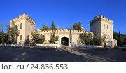 Дворец Голицына в Новом Свете, Крым, эксклюзивное фото № 24836553, снято 25 октября 2016 г. (c) Яна Королёва / Фотобанк Лори