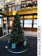 """Купить «Новогодняя елка от ювелирного бутика """"Tiffany&Co"""" в легендарном ГУМе в Москве», эксклюзивное фото № 24850301, снято 8 января 2017 г. (c) lana1501 / Фотобанк Лори"""