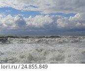 Купить «Шторм на Черном море, брызги волн, красивые облака», фото № 24855849, снято 14 октября 2016 г. (c) DiS / Фотобанк Лори