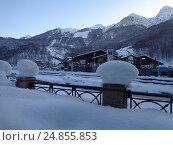 Купить «Засыпанный снегом горнолыжный курорт Красная Поляна», фото № 24855853, снято 23 декабря 2016 г. (c) DiS / Фотобанк Лори