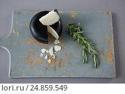 Купить «Gouda cheese with rosemary leaves on chopping board», фото № 24859549, снято 16 сентября 2016 г. (c) Wavebreak Media / Фотобанк Лори