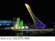 Купить «Светомузыкальный фонтан, Олимпийский парк, Адлер», фото № 24870445, снято 13 января 2017 г. (c) Игорь Архипов / Фотобанк Лори