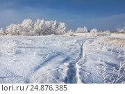 Купить «Field covered with snow and trees and grass in a white frost», фото № 24876385, снято 20 января 2013 г. (c) Baturina Yuliya / Фотобанк Лори