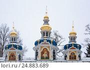 Купить «Walk on Pskovo- Pechersky Monastery in winter», фото № 24883689, снято 4 января 2017 г. (c) Анна Костенко / Фотобанк Лори