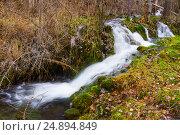 Купить «brook with moss stones at forest», фото № 24894849, снято 9 декабря 2014 г. (c) Яков Филимонов / Фотобанк Лори