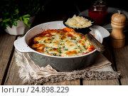 Купить «Baked Stuffed Conchiglioni with Tomato», фото № 24898229, снято 18 января 2017 г. (c) Татьяна Ворона / Фотобанк Лори