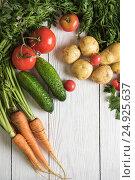 Купить «freshly grown raw vegetables», фото № 24925637, снято 17 июля 2016 г. (c) Jan Jack Russo Media / Фотобанк Лори