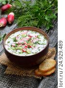 Купить «Summer yoghurt cold soup», фото № 24929489, снято 23 июня 2016 г. (c) Надежда Нестерова / Фотобанк Лори