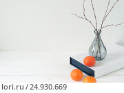 Купить «Minimal elegant composition with tangerines and vase», фото № 24930669, снято 15 октября 2018 г. (c) Екатерина Рыбина / Фотобанк Лори