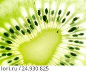 Green kiwi fruit. Стоковое фото, фотограф Валерия Лузина / Фотобанк Лори