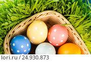 Easter eggs in basket on meadow. Стоковое фото, фотограф Валерия Лузина / Фотобанк Лори