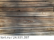 Купить «Wooden planks background», фото № 24931397, снято 20 июня 2015 г. (c) Александр Волков / Фотобанк Лори
