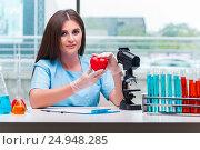 Купить «Young female doctor working in the lab», фото № 24948285, снято 26 сентября 2016 г. (c) Elnur / Фотобанк Лори