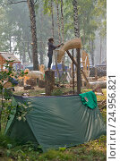 Купить «Праздник топора в Томске, изготовление скульптуры лошади», фото № 24956821, снято 20 августа 2016 г. (c) Gaft Eugen / Фотобанк Лори