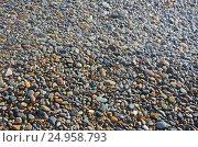 Купить «Разноцветная морская галька. Крым, Яшмовый пляж на мысе Фиолент», фото № 24958793, снято 13 сентября 2016 г. (c) Ирина Носова / Фотобанк Лори