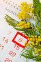 8 марта - поздравительная открытка с мимозой, фото № 24990073, снято 10 марта 2016 г. (c) Зезелина Марина / Фотобанк Лори