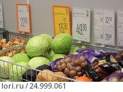 Купить «Овощи в магазине», эксклюзивное фото № 24999061, снято 28 января 2017 г. (c) Яна Королёва / Фотобанк Лори