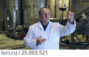 Купить «Man aged estimates on winery», видеоролик № 25003521, снято 31 октября 2016 г. (c) Яков Филимонов / Фотобанк Лори