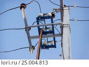 Разъединитель 6 киловольт на столбе. Стоковое фото, фотограф Александр Романов / Фотобанк Лори