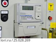 Купить «Электрический счетчик на  распределительном устройстве», фото № 25028269, снято 31 января 2017 г. (c) Геннадий Соловьев / Фотобанк Лори
