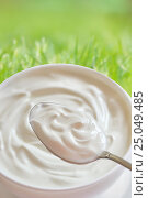Купить «Ceramic bowl of white yoghurt», фото № 25049485, снято 1 февраля 2017 г. (c) Iordache Magdalena / Фотобанк Лори