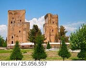Ruins of Ak-Saray Palace, Shakhrisabz (2014 год). Стоковое фото, фотограф Надежда Болотина / Фотобанк Лори