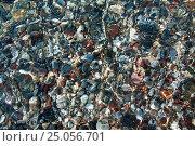 Камни в воде. Стоковое фото, фотограф Максим Попыкин / Фотобанк Лори