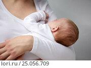 Купить «close up of mother holding newborn baby», фото № 25056709, снято 23 ноября 2016 г. (c) Syda Productions / Фотобанк Лори